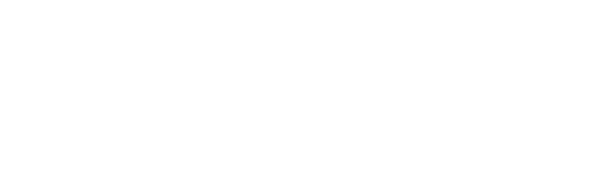 Bizople Solutions Pvt. Ltd.